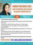 How to Generate 250 Leads on the Web in 4 Weeks or Less