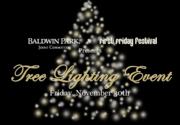 Baldwin Park, Tree Lighting Event