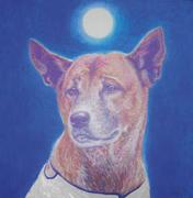"""นิทรรศการ """"ภาพทิวทัศน์ล้านนา และเรื่องหมา ๆ แมว ๆ"""" (Lanna landscape and Stories of Dogs & Cats"""" )"""