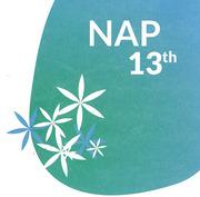 """งาน """"NAP ครั้งที่ 13"""" (Nimmanhaemin Art&Design Promenade)"""