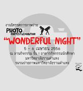 """นิทรรศการภาพถ่าย """"Wonderful night"""""""