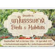 """นิทรรศการ """"นกในธรรมชาติ"""" (Birds & Habitats)"""