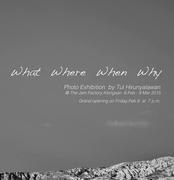 """นิทรรศการแสดงภาพถ่าย  """"WHAT WHERE WHEN WHY"""""""