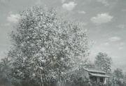 """นิทรรศการ """"ทิวทัศน์ของโลกที่จังหวัดตรัง"""" (World's landscape at Trang province)"""