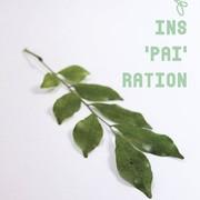 """นิทรรศการ """"INS'PAI'RATION"""""""