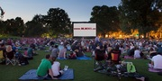 Outdoor movie screen - www. MLM365.us