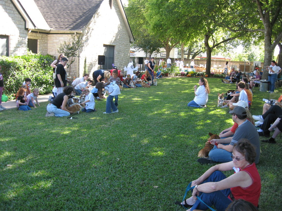 10-25-08 Corgi Celebration 31