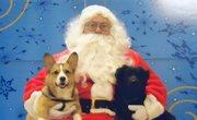 McGee & Gibbs 1st Christmas