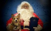 McGee & Gibbs 1st Christmas 2