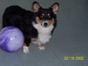 Okie loves balls