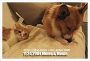 Monie & MOMO