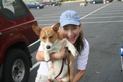 Doggie Obedience School