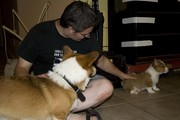 Brian with his favorite boys, Trigger and Scamp