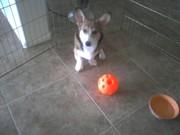 Photo uploaded on October 29, 2009