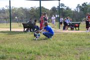 Houston Area Corgi Meetup 3-26-10