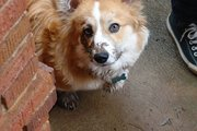 I has been playin in mud?!?! Why you fink dat?