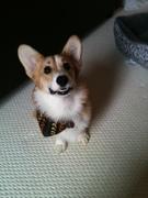 Photo uploaded on October 24, 2012