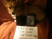 Wrigley and her confession