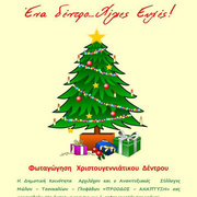Tree lighting in Archilochos / Φωτισμός χριστουγεννιάτικου δέντρου στον Αρχίλοχο