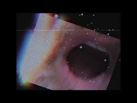 FRESH RELEASE : The Minus 5 -  Bleach Boys & Beach Girls  (Official Video)