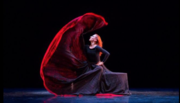 Free Webinar—Dance of Destiny: An Archetypal Redefinition of the Feminine