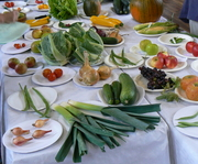 Glastonbury Harvest Show