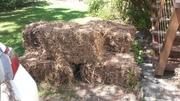 Sugar Cane Bales