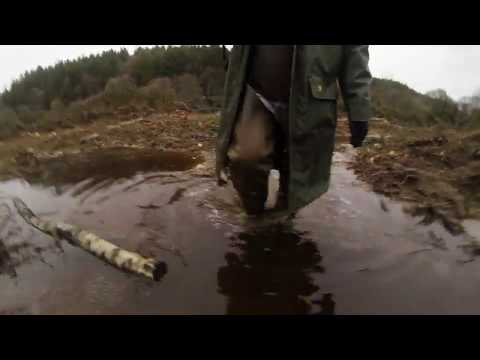 dans la boue apres les travaux forestier