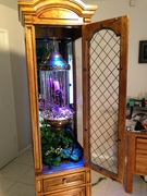 oil rain lamp in display case 3