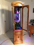 oil rain lamp in display case 13