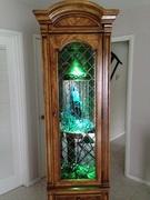 oil rain lamp in display case 1