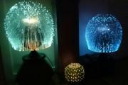 Twin Sunburst and the Fiber Optic Cactus #2
