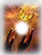 Spiritual Metamorphasis