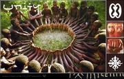 "Unity: Holistic Wellness - ""Sponsor A Child"""