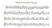 Wild Raccoon Track -arr #2