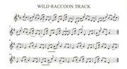 Wild Raccoon Track -arr #1