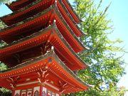 Japenese Garden