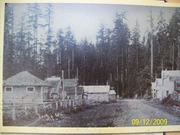 Forks in the early 1900's