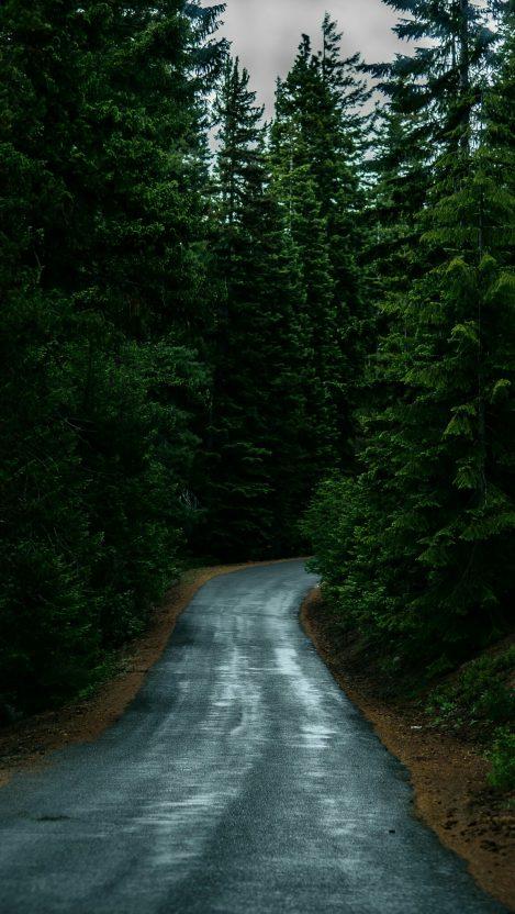A drive down familiar territory...
