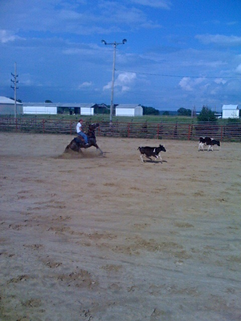 Uploading Photos to Ultimate Calf Roping