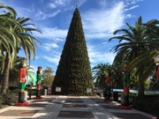 The Festive Family Holiday Tour of Downtown Orlando