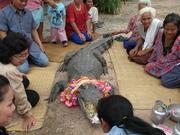Monsieur crocodile...! Le saigneur de Thaïlande...