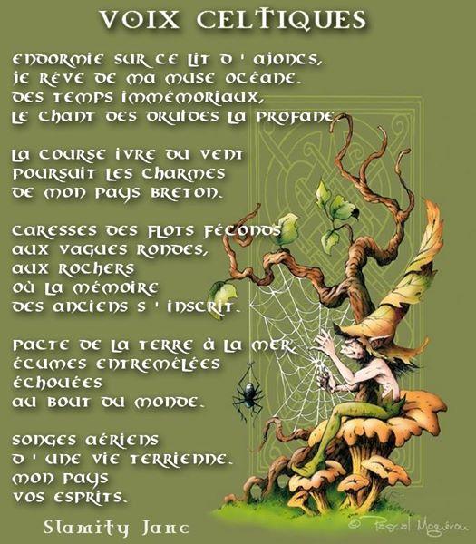 Voix celtiques