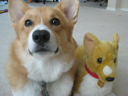 Ein and his buddy