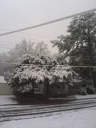 Snow day!! 2/12/10