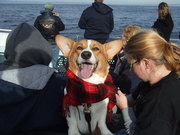 Ein loved his boat ride