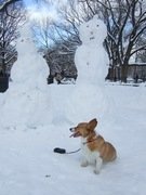 Ein and the 2 snowmen