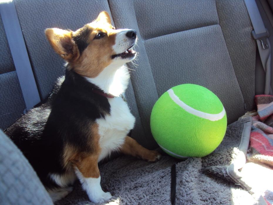 Wow big ball, Mom!