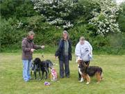 Haverfordwest racecourse charity show may 2011