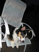 Tia in her chair at the bonfire